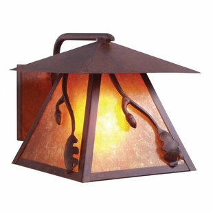 Bargain Acorn 1-Light Outdoor Wall Lantern By Steel Partners