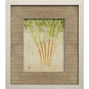 Herb Life III by Irena Orlov Framed Photographic Print by Star Creations