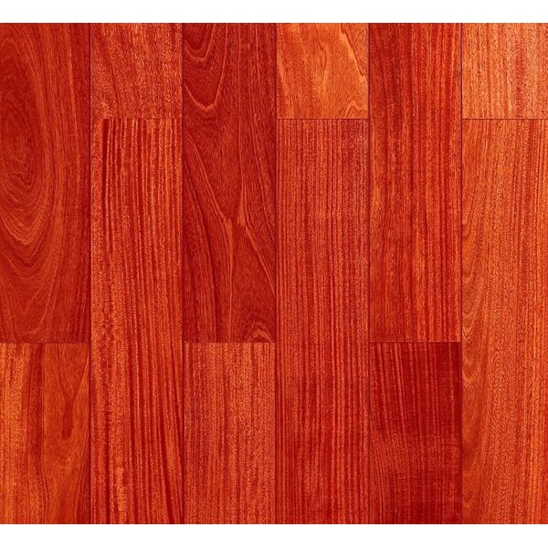 5 Myra Engineered Santos Mahogany Hardwood Flooring in Natural by Welles Hardwood