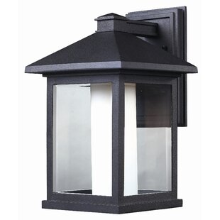 Affordable Olive 1-Light Outdoor Wall Lantern By Andover Mills