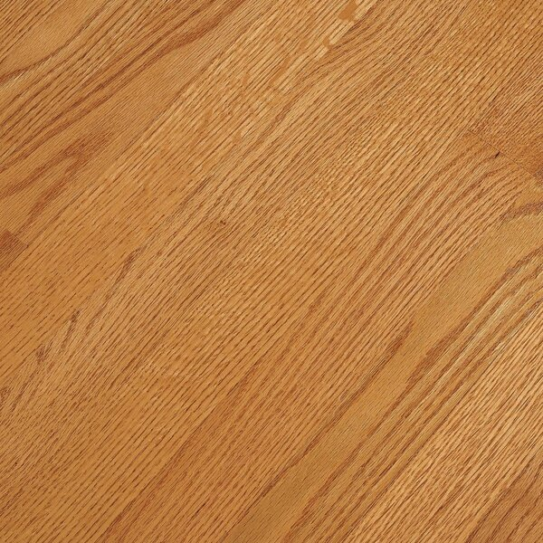2-1/4 Solid Oak Hardwood Flooring in Butterscotch by Bruce Flooring