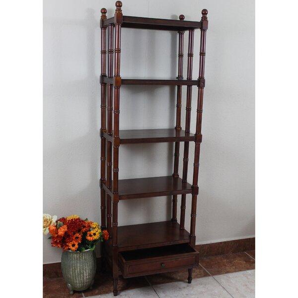 Betty Standard Bookcase by Astoria Grand