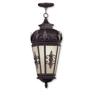Purchase Bedarra 1-Light Outdoor Hanging Lantern By Astoria Grand