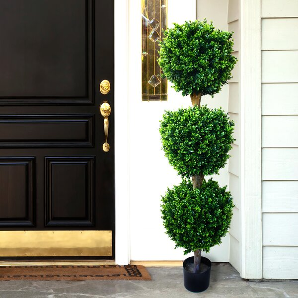 Brooklyn Floor Boxwood Topiary in Pot by Darby Home Co