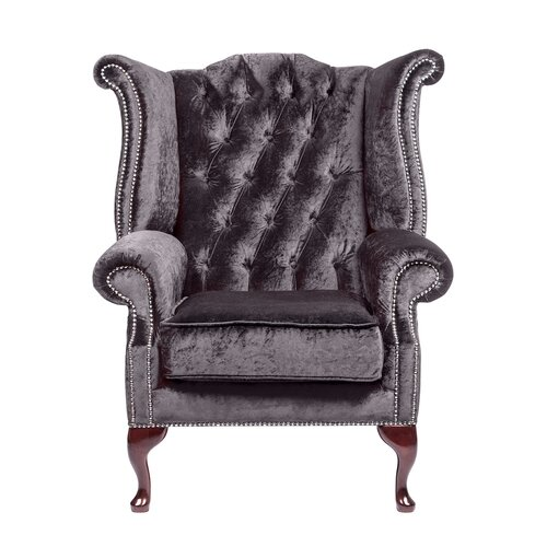 Aldo Wingback Chair Willa Arlo Interiors Colour: Storm
