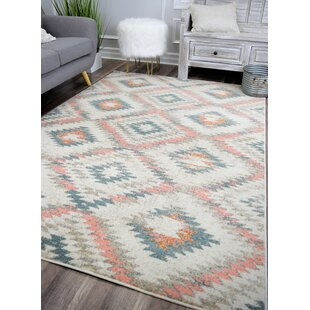 Commander Tribal Transitional Rose/White Area Rug By Union Rustic