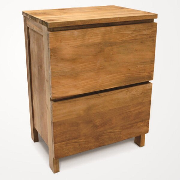 Simplie 2 Drawer Accent Chest by NES Furniture