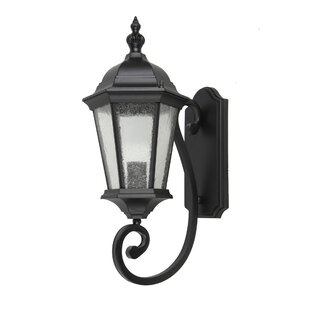 Online Reviews Dunand 1-Light Outdoor Wall Lantern By Canora Grey
