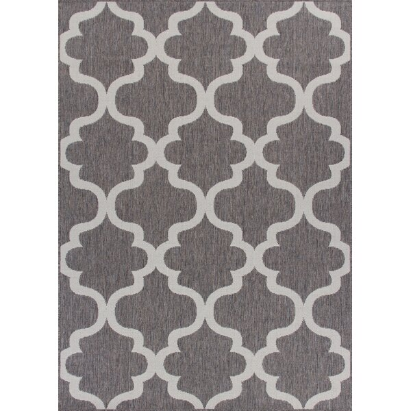 Ricky Weather-Proof Gray Indoor/Outdoor Area Rug by Charlton Home