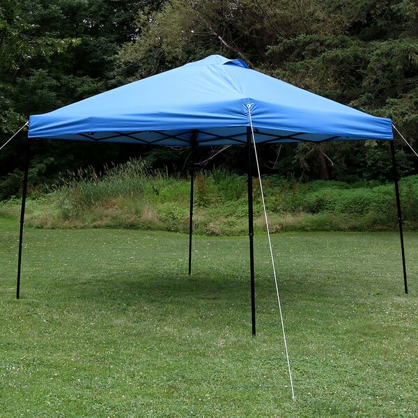 Denning 10 Ft. W x 10 Ft. D Steel Pop-Up Canopy by Freeport Park