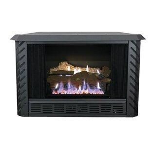 Vent free gas fireplace wayfair vent free propane fireplace insert solutioingenieria Choice Image