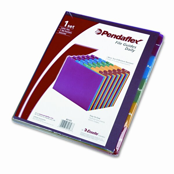 Top Tab File Guides, Daily, 1/5 Tab, Polypropylene, Letter (Set of 30) by Esselte Pendaflex Corporation