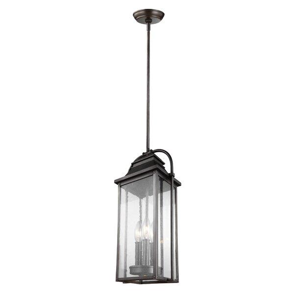 Shekar 3-Light Outdoor Hanging Lantern by Gracie Oaks