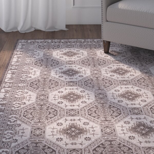Salisbury Brown/Ivory Area Rug by Charlton Home