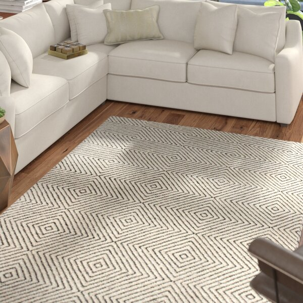 Marcelo Hand Woven Ivory Area Rug by Mercury Row