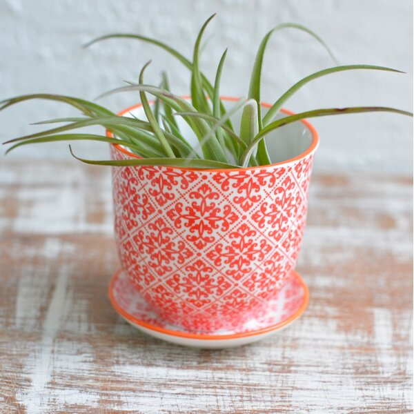 Kingsmill Ceramic Pot Planter by Bungalow Rose
