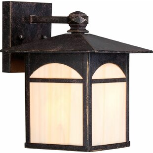 Check Prices Sweeny 1-Light Outdoor Wall Lantern By Millwood Pines