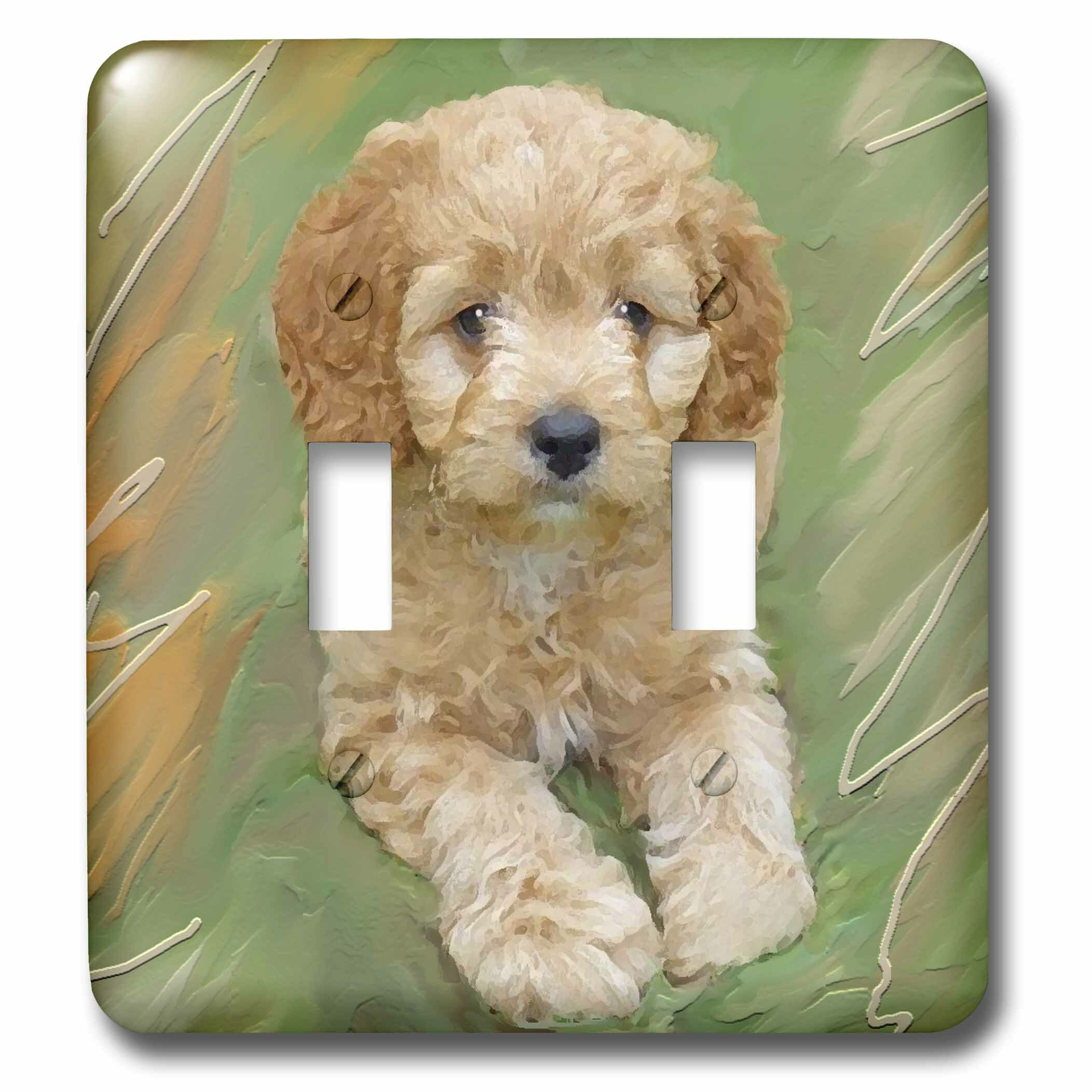 3drose Miniature Poodle Puppy 2 Gang Toggle Light Switch Wall Plate