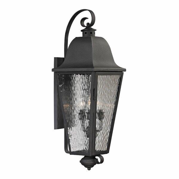 Hammontree 4-Light Outdoor Wall Lantern by Alcott Hill