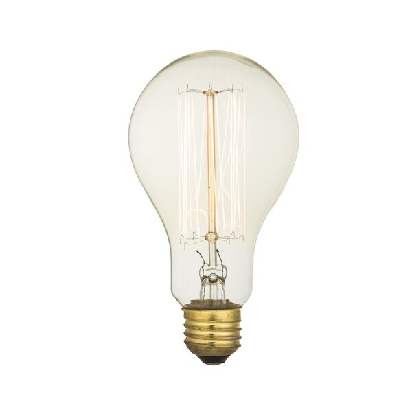 Edison Vintage 40W Incandescent Light Bulb (Set of 6) by String Light Company