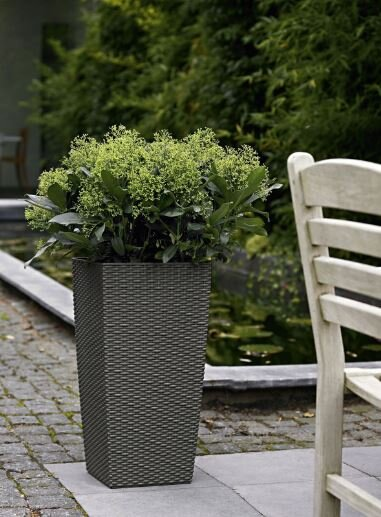 Cubico Cottage Self-Watering Wicker Pot Planter by Lechuza