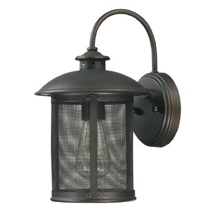 Affordable Calvin 1-Light Outdoor Wall Lantern By Gracie Oaks