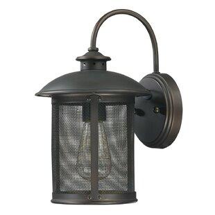 Bargain Calvin 1-Light Outdoor Wall Lantern By Gracie Oaks
