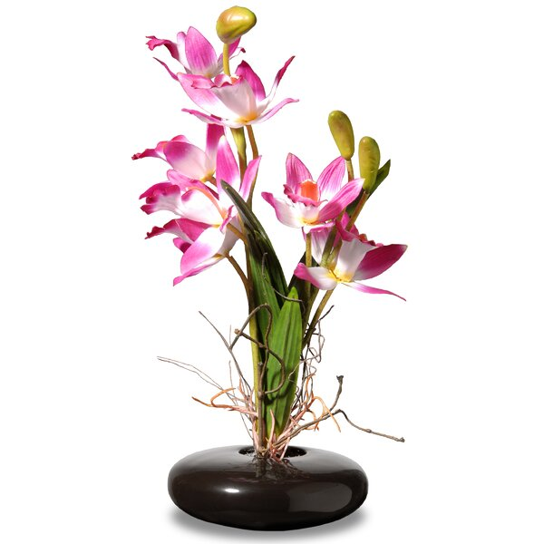Orchid Floral Arrangement in Pot by Bloomsbury Mar