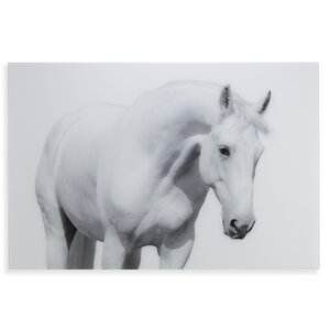 'White Horse I' Photographic Print by Latitude Run