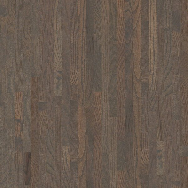 Sawgrass 2-1/4 Solid Red Oak Hardwood Flooring in Shawnee by Shaw Floors