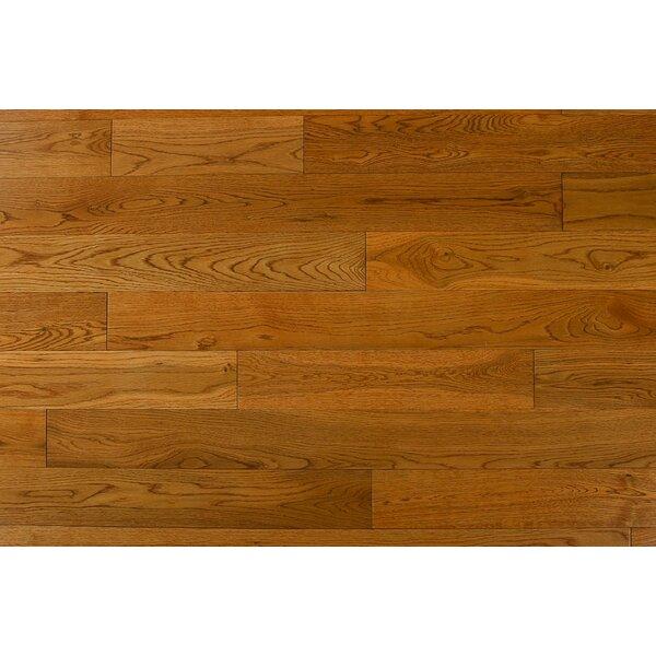 Alzamora 3.5 Solid Oak Hardwood Flooring in Golden Tan by Albero Valley