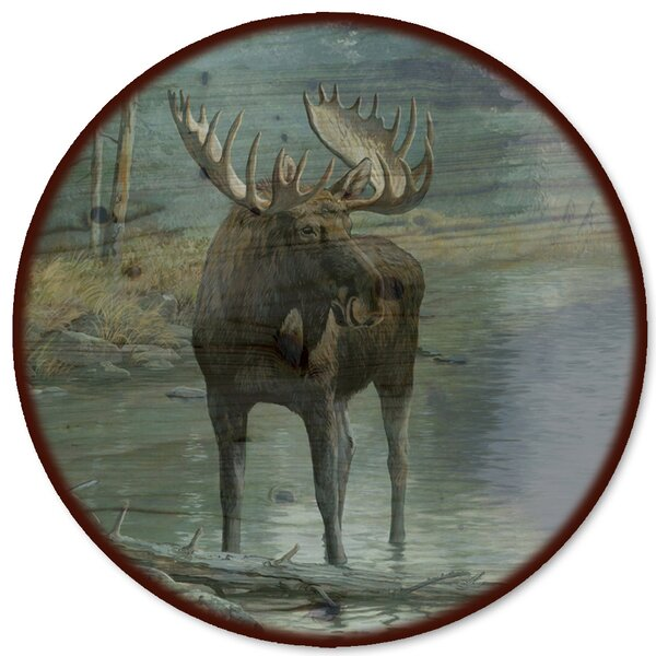 Quiet Water Moose Lazy Susan by WGI-GALLERY