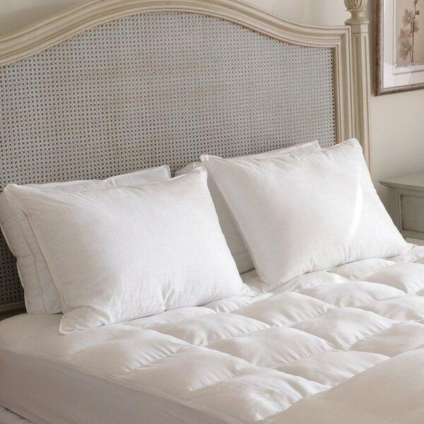 Beyond Down Alternative Pillow Set Of 2 By Carpenter Co