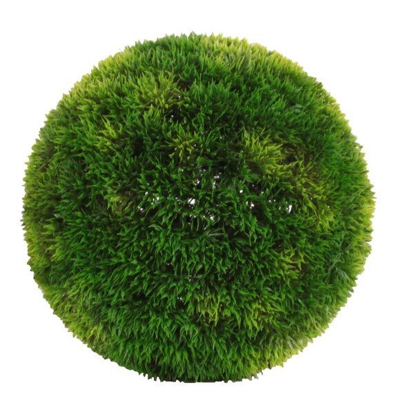 Round Boxwood Ball Decor by Urban Trends