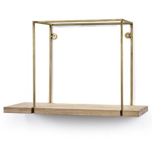 Reilly Hanging Brass Frame Accent Shelf by Brayden Studio