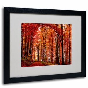 The Red Way by Philippe Sainte-Laudy Framed Photographic Print by Trademark Fine Art