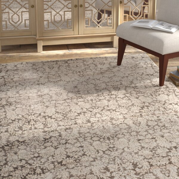 Vishnu Brown / Cream Area Rug by Bungalow Rose