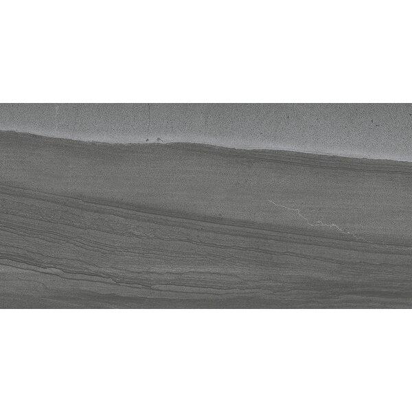 Sandstorm 12 x 24 Porcelain Field Tile in Sahara by Emser Tile