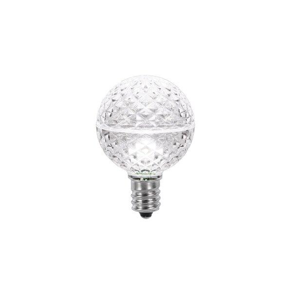 0.45W 120-Volt LED Light Bulb (Set of 25) by Vickerman