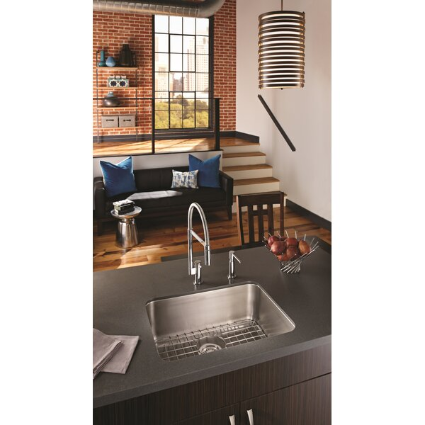 19 L x 25 W Undermount Kitchen Sink by Franke