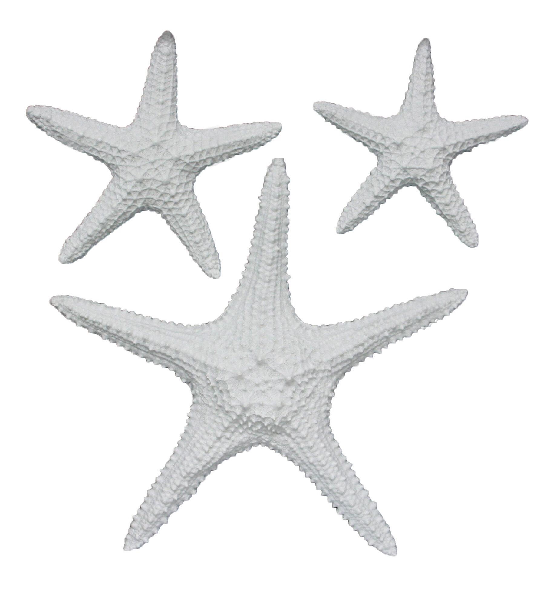 Fetco Home Decor Yelton 3 Piece Starfish Wall Décor Set Reviews Wayfair