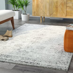 8' x 10' area rugs you'll love | wayfair 8x10 Rug