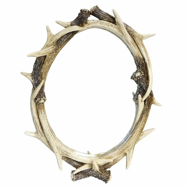 Alonzo Antler Accent Mirror by Millwood Pines