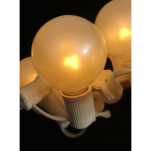5W E12 Incandescent Globe Light Bulb (Set of 10) by Northlight Seasonal