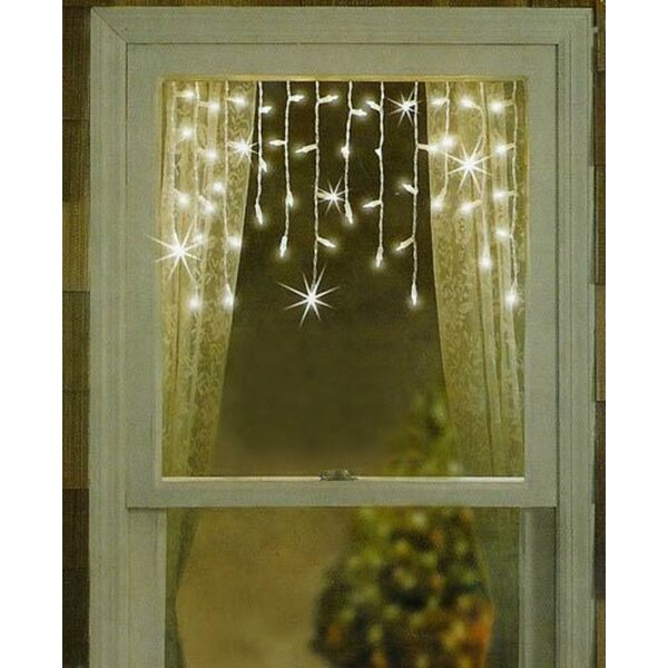 50 Window Curtain Icicle Christmas Light by Brite Star