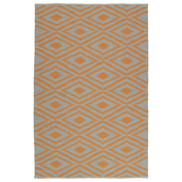 Greenfield Gray/Orange Indoor/Outdoor Area Rug by Loon Peak