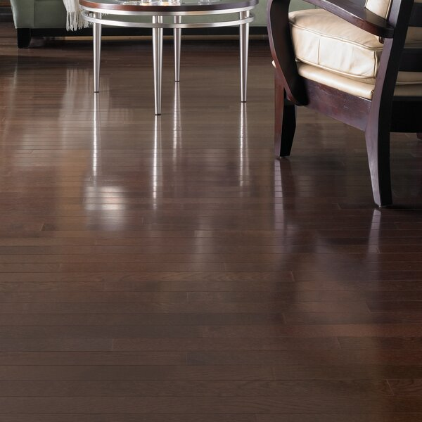 Color Strip 2-1/4 Solid White Oak Hardwood Flooring in Metro Brown by Somerset Floors