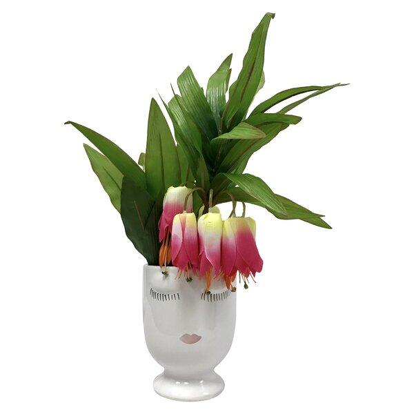 Tropical Celfie Lilies Floral Arrangements in Pot by Mercer41
