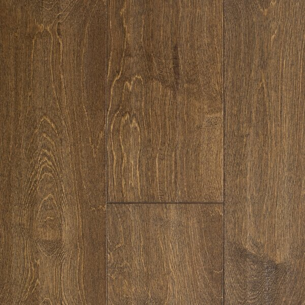 Edinburgh 5 Engineered Birch Hardwood Flooring in Brown by Branton Flooring Collection