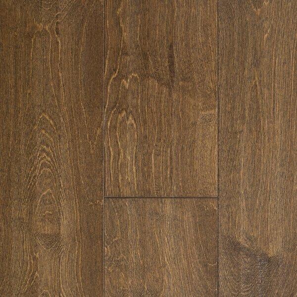 Edinburgh 5 Engineered Birch Hardwood Flooring in Brown by Branton Flooring Collection